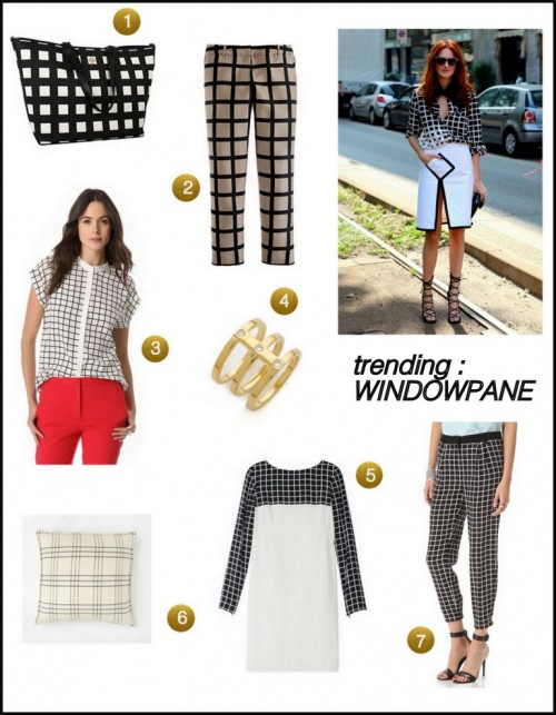 Trend- Windowpane