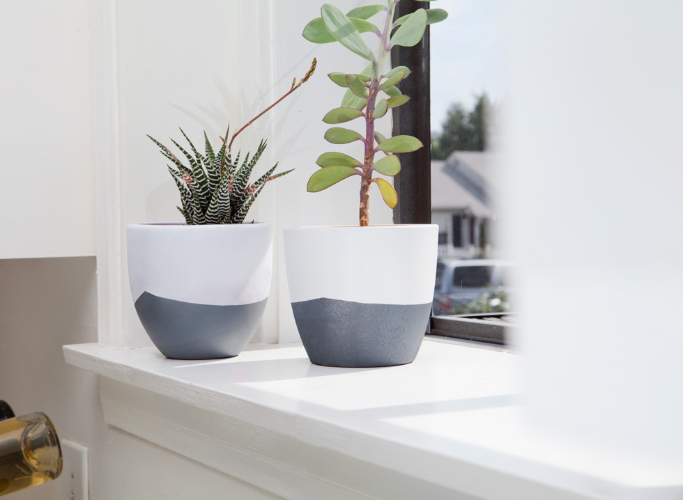 two diy succulent planters on shelf