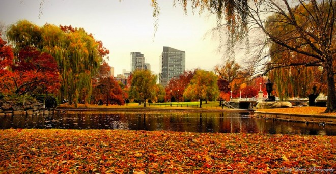 Best-Cities-To-Visit-In-The-Fall-Boston-2
