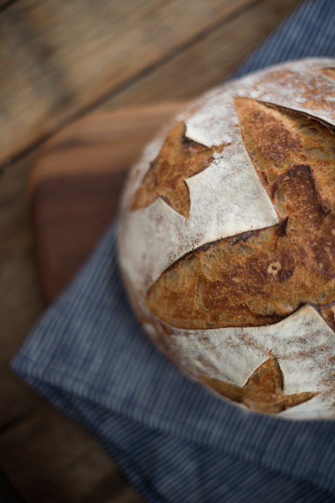 how-to-make-homemade-sourdough-15