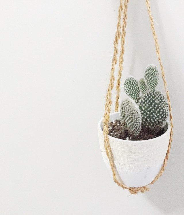diy-easy-macrame-plant-hanger