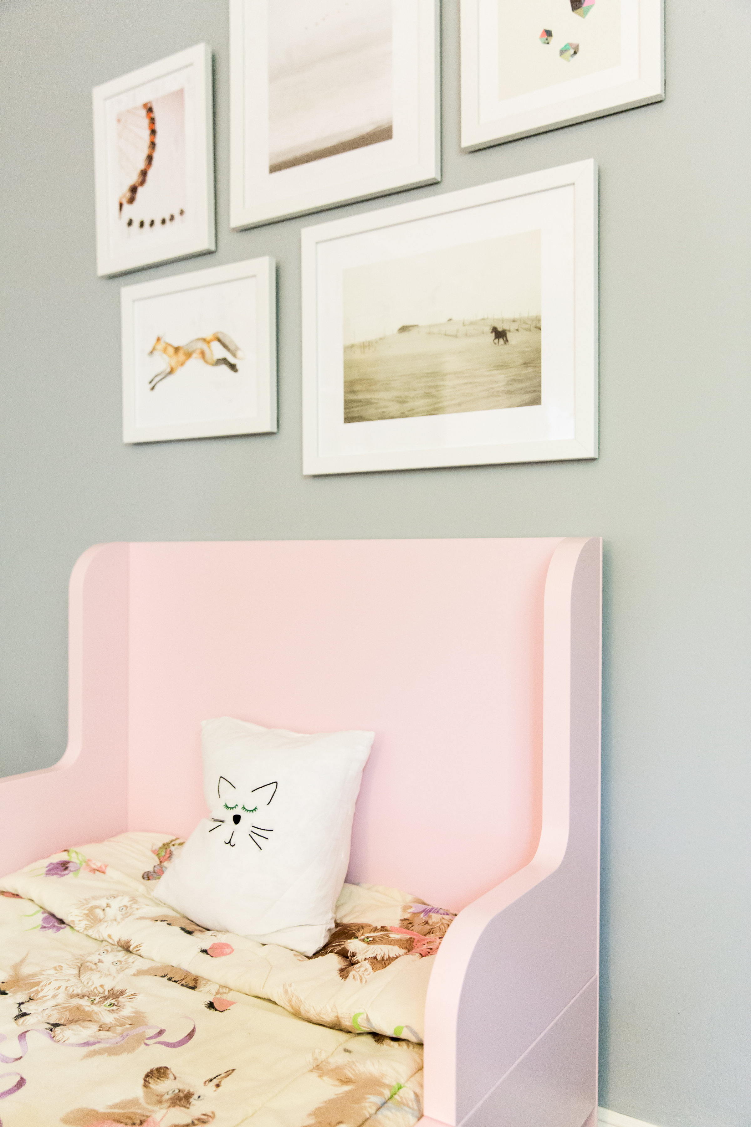 Parkers_Toddler_Bed_Room_3