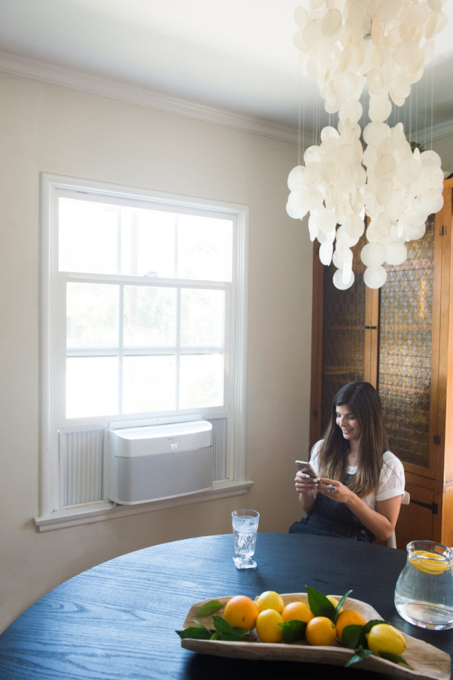 summer-air-conditioner-window-unit-decor-3