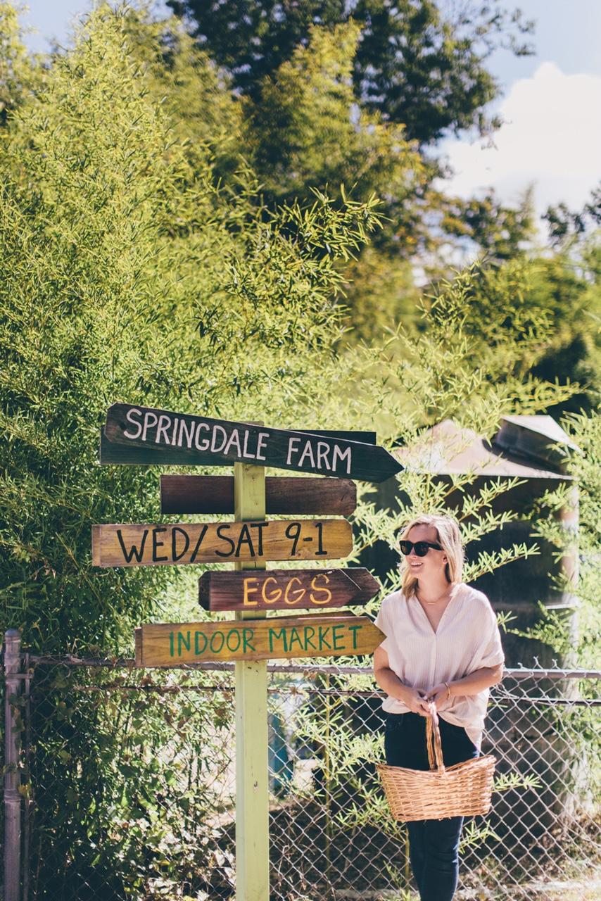 Springdale Farm Austin