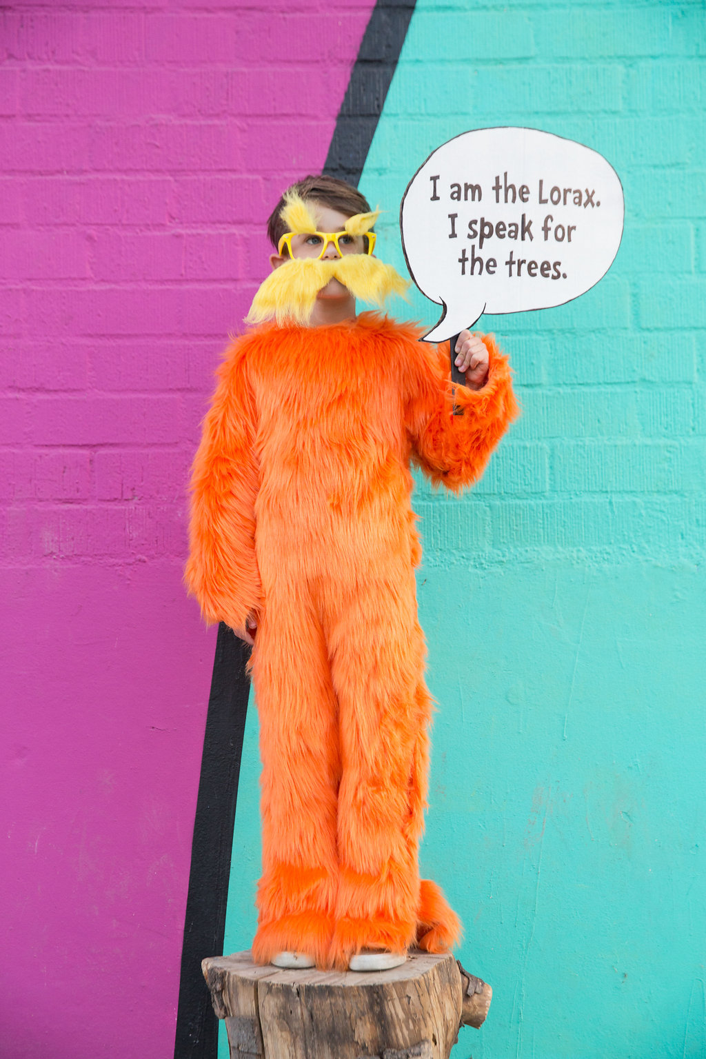 A boy in the lorax costume