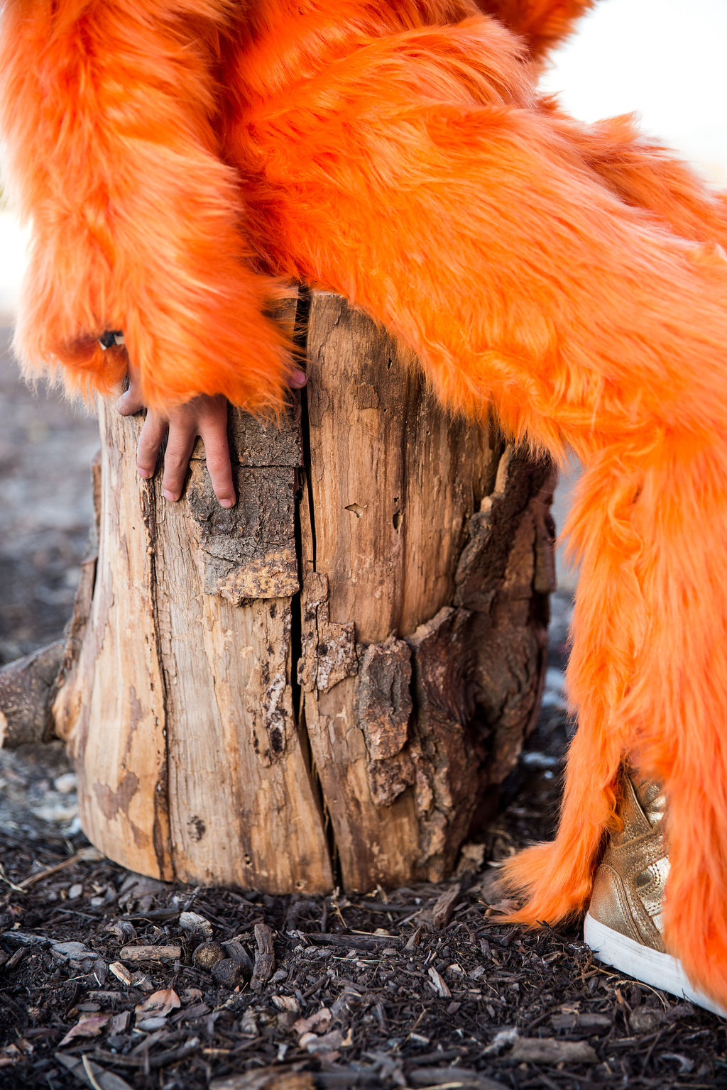 Close up of the orange fur