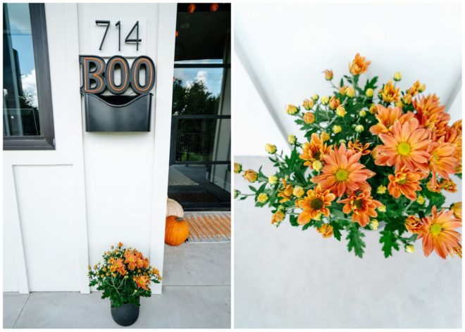 front-porch-halloween-makeover-5