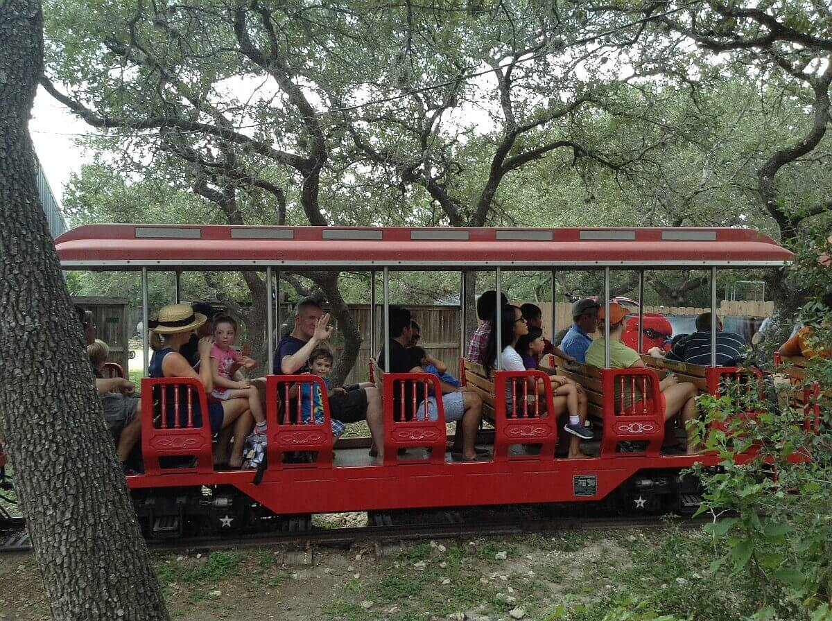kids and parents on the train in the austin zoo